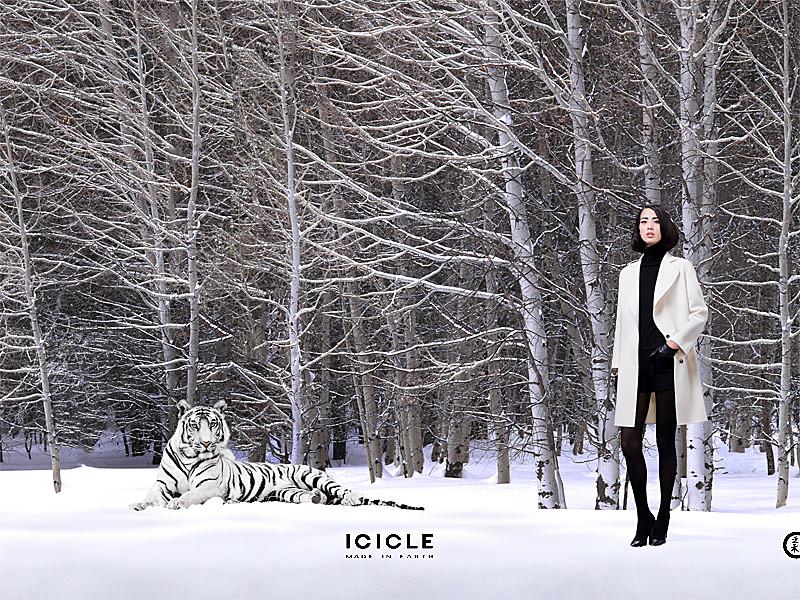 ICICLE- Par-Adrian-Parfene.jpg