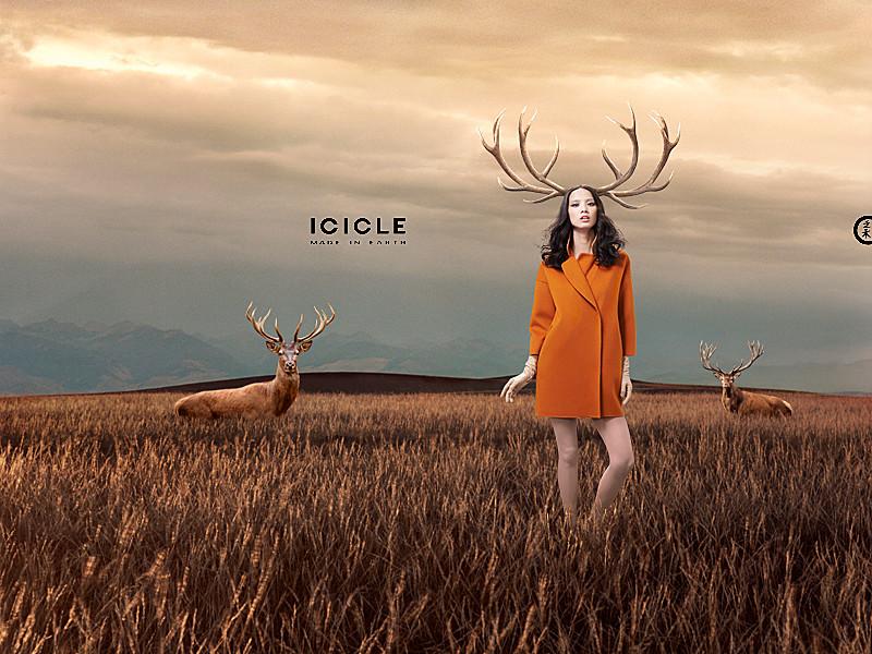 ICICLE Par Adrian Parfene